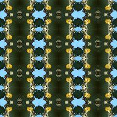 Mucho Verde + Un Poco De Amarillo  | Geometric Cactus x Pol (desde fotos en Galapgos | from photo in Galapgos )