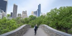 new york city central park bridge How much to be part of the 1% per location