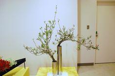 Kobe Ikebana Exhibition   Flickr - Photo Sharing!