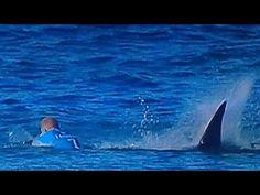 Бяла акула нападна топ сърфист по време на живо излъчване (видео)