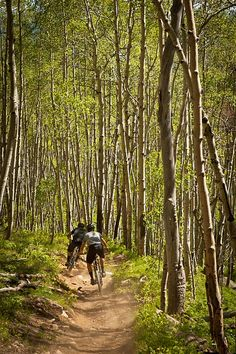 Spring time riding. Doctors Park trail outside of Crested Butte, Colorado.