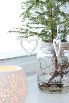 Little Christmas tree - Høytrykk