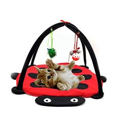Pet Cat Bed Kitten Toys Mobile Activity Playing Bed Toys Cat Bed Pad Blanket House Pet Furniture Cat Tent Toys Hanging Ball *** Details can be found by clicking on the image. (This is an affiliate link) Kitten Toys, Baby Kittens, Pet Toys, Cats And Kittens, Kitten Cat, Cats Meowing, Cat Tent, Cat Hammock, Hammock Tent