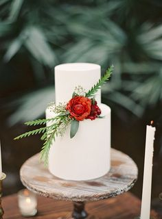 Simply, wintry cake designed by Earth and Sugar