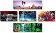 Adorn your home with the natural beauty of this Trademark Fine Art canvas wall art set. <ul> <li>Breathtaking natural landscape prints WHAT'S INCLUDED</li> <li>Three 14'' x 19'' panels</li> <li>Two 18'' x 24'' panels PRODUCT DETAILS</li> <li>Canvas, MDF</li> <li>Attached sawtooth</li> <li>Horizontal or vertical display</li> <li>Wipe clean</li>