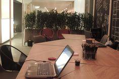 cafe do saber studio sopro