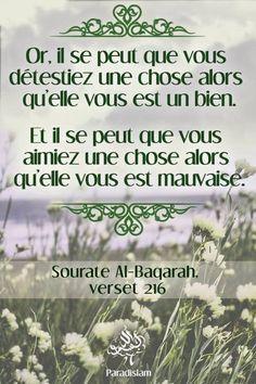 • Le coran, c'est notre source, notre voie, le repos de notre âme...