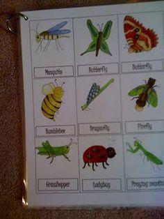 Bug printables.