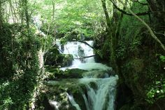 Nacedero del Urederra,  More information Tourism Navarra Spain: ☛ #LivingNature   #RuralTourism ➦  ➦ Más Información del Turismo de Navarra España: ☛ #NaturalezaViva  #TurismoRural ➦   ➦ www.nacederourederra.tk  ☛  ➦ http://mundoturismorural.blogspot.com.es ☛  ➦ www.casaruralnavarra-urbasaurederra.com ☛  ➦ http://navarraturismoynaturaleza.blogspot.com.es ☛  ➦ www.parquenaturalurbasa.com ☛  ➦ http://nacedero-rio-urederra.blogspot.com.es/