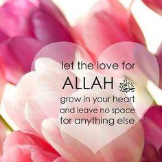Let the love for allah grow in your heart! al- qur'an allah Islam Muslim, Allah Islam, Islam Quran, Quran Pak, Islam Hadith, Tgif, Beautiful Islamic Quotes, Islamic Inspirational Quotes, Islamic Qoutes