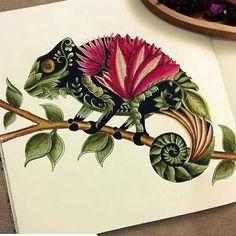 "#Repost @daphnesgallery Johanna Basford's new book ""Magical Jungle"" was being sent me by staedtler. Thank you so much for coloring book and pencils @johannabasford @staedtlermars #blomstermandala #jardimsecretofans #johannabasford #inspiracao #art #art_we_inspire #colorindolivrostop #coloringbook #colorful #adultcoloringbook #colortherapyapp #colortherapyclub #artecomoterapia #beautifulcoloring #livrocoloriramo #secretgarden #enchantedforest #artecomoterapia #jardimsecretolove…"