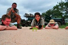 Field Guide Course in South Africa | GoEco