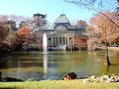 Palacio de Cristal : Parque de El Retiro