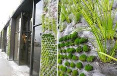 Home. Vertical Herb Garden