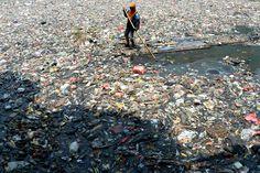 Le 8 octobre, une employée Indonésienne nettoie les eaux polluée de Jakarta. Selon un rapport national sur l'environnement publié en Juin 2013, 82% des cinquante-deux rivières étudiées sont polluées par des déchets domestiques et industriels.