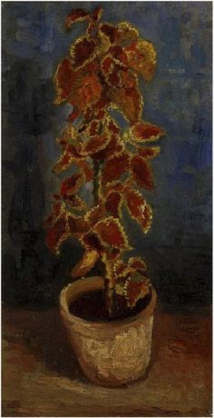 Vincent van Gogh Painting, Oil on Canvas Paris, France: Summer, 1886 Van Gogh Museum Amsterdam, The Netherlands, Europe  Coleus Plant in a Flowerpot  Van Gogh Gallery