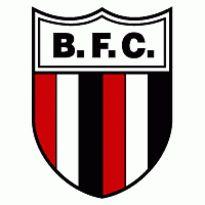 Botafogo SP Logo. Get this logo in Vector format from http://logovectors.net/botafogo-sp/