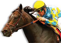 Del Mar 2012 Season starts on Wednesday July 18th!  Come join the fun!  Stay at Pelican Cove Inn and take the train to the track.  www.pelican-cove.com