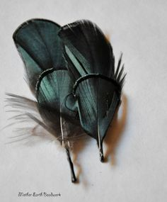 Hey, I found this really awesome Etsy listing at https://www.etsy.com/listing/186872396/stunning-duck-feather-hair-pins-bobby