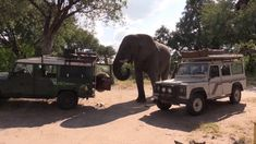 Huge Elephant raids Land Rover and then tries to Flip it ! This did not happen in Kruger National Park but it in Botswana's Moremi Game Reserve. Kruger National Park Safari, National Parks, African Elephant Facts, Rainforests, Game Reserve, African Safari, Family Camping, Wildlife, Pets