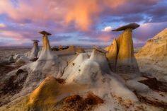 Magic Mushrooms by Paul Rojas on 500px