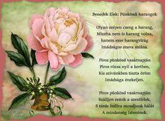 Pentecost, Plants, Easter Activities, Plant, Planets