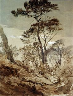 John Ruskin, Mountain Landscape, Macugnaga, 1845. Pencil and brown ink with brown and grey ink wash