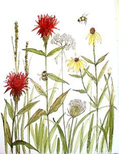Botanical Garden Art Watercolor Painting Flowers Bees Original Nature Art by Laurie Rohner. $69.00, via Etsy.