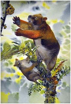 New research suggests massive marsupials lived in treetops in early Australia  http://phys.org/news/2012-11-massive-marsupials-treetops-early-australia.html