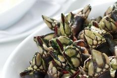 Restaurantes da semana: Segredos da Costa Vicentina!