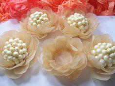 forminhas-para-doces-em-papel-vegetal-forminhas-para-festas