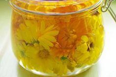 Jak zpracovat měsíček lékařský | Jak na domácí měsíčkový krém a olej