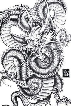 40 Best Karate Images Images Dragon Tattoo Dragon Tattoo Designs Dragon Art