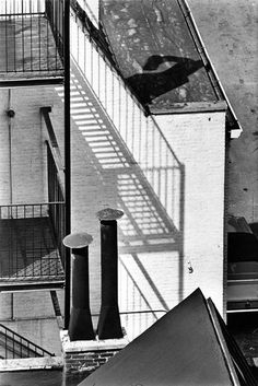 Le foto di Andre Kertesz dalla sua finestra - The New York Times