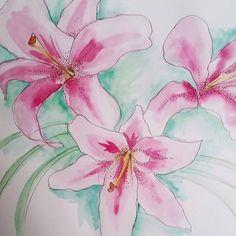 Watercolour lillies