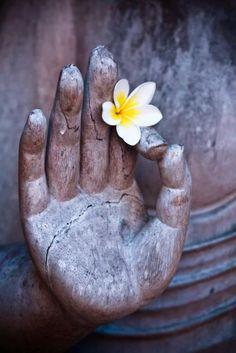 'Jezelf bevrijden is terugkeren naar je oerkracht, je hartfrequentie in resonantie brengen met Moeder Aarde en Vader Kosmos. Daar is zelfkennis voor nodig. Jezelf bevrijden, is loslaten wat stromende Liefde in de weg zit door jezelf te verruimen, tot het hoogst haalbare in jou.' Met de workshops en activiteiten in mijn praktijk ondersteun ik je er graag bij...
