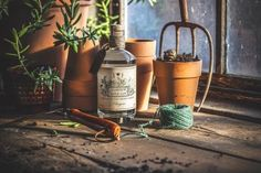 SATURDAY 4TH APRIL - Garden Shed Gin Tasting – Geraldo's of Largs Gin Tasting, Help The Environment, Try Something New, Planter Pots, Shed, Drinks, Garden, Events, Store