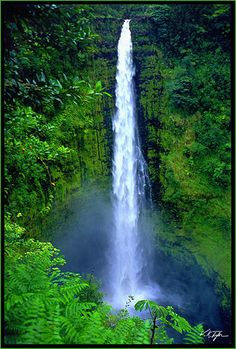 Akaka Falls Big Island of Hawaii