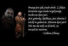 Honest Quotes, Ciri, The Witcher, Sarcasm, Sentences, Humor, Memes, Funny, Swallow