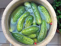 7 different pickle recipes in 7 days, including crock dills http://texastitos.com