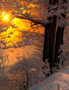 Winter sunset...