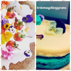 Cilantro y Perejil: Propuestas #retomayobloggersmx