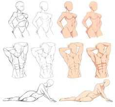 Pin by anthony delgadillo on art in 2019 body drawing, drawings, figure dra Body Sketches, Anatomy Sketches, Anatomy Drawing, Anatomy Art, Art Drawings Sketches, Human Body Drawing, Body Reference Drawing, Art Reference Poses, Art Poses