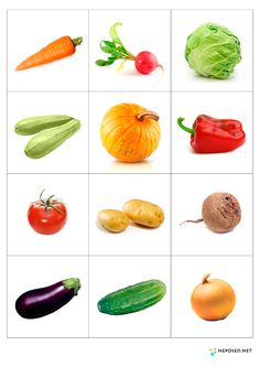 14 Printable Pictures Of Vegetables Fruit And Veg, Fruits And Vegetables, Fruit Fruit, Vegetable Prints, Montessori Materials, Kids Education, Preschool Activities, Kids And Parenting, Healthy Eating