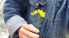 Imagem de aesthetic, flowers, and grunge
