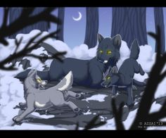 winter play by azzai on DeviantArt : winter play Anime Wolf, Wolf Pictures, Pictures To Draw, Fantasy Wolf, Fantasy Art, Warrior Cats, Wolf Deviantart, Wolf Artwork, Lion King Art