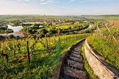 Volkach in #Franken #Wein #vino #Sommer #DasOriginal http://www.bayern.by/bayern-sommer-das-original