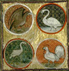 Bathélémy lAnglais. Livre des propriétés des choses. Reims, Bibliothèque municipale, ms 993, fol 148v.