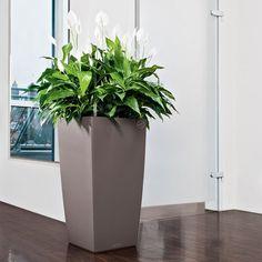 Pot Classico LS all inclusive - kit incluant le bac de plantation et son set d'arrosage