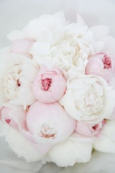 I absolutely love this bouquet of peonies! I always imagined my bouquet to be full of sweet smelling springtime flowers. Flowers such as peonies, lilacs, and pastel roses. White Peonies Bouquet, Hydrangea Bouquet, Pink Peonies, Pink Flowers, Colorful Roses, Fresh Flowers, Pink Roses, Ranunculus Flowers, Flower Shops